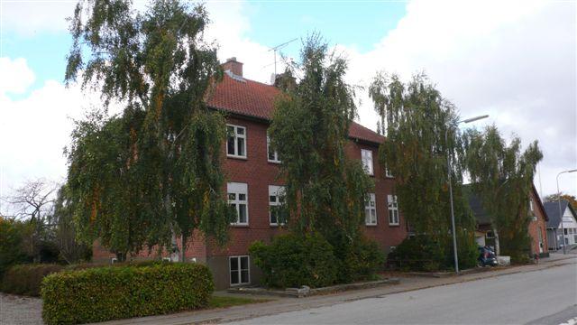 Astrup. Bøgstedvej 305. Vortebirk (Betula verrucosa). Foto JS 10.10.13. L1350621