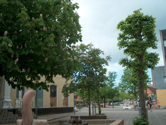 Knuth Beckers Plads ærestræ